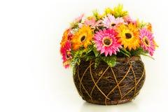 Kolorowi piękni kwiaty Zdjęcia Royalty Free