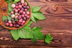 Kolorowi różowi agresty pełno odżywcze witaminy w drewnianym koszu Obraz Royalty Free