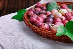 Kolorowi różowi agresty pełno odżywcze witaminy w koszu na szarej tkaninie na drewnianym tle i _ Fotografia Stock