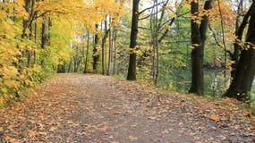 Kolorowi Spada liście I przejście brzeg rzekim zdjęcia royalty free