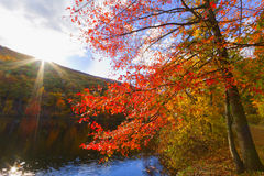 Kolorowi spadek scenerii krajobrazy zdjęcie royalty free