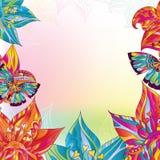 kolorowi tło kwiaty Zdjęcia Stock