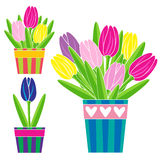 Kolorowi tulipany w garnek ustawiającej wektorowej ilustraci ilustracji