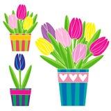 Kolorowi tulipany w garnek ustawiającej wektorowej ilustraci Zdjęcia Stock