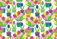 Kolorowi tulipany w garnka wektoru bezszwowym wzorze Zdjęcie Royalty Free