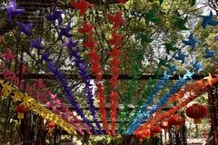 Kolorowi wiatraczki w parku Obraz Stock