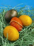 Kolorowi Wielkanocni jajka zdjęcie royalty free