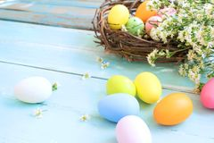 Kolorowi Wielkanocni jajka w gniazdeczku z kwiatami na błękitnym drewnianym tle fotografia royalty free