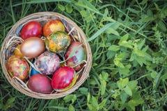 Kolorowi Wielkanocni jajka w kosza i zielonej trawy tle Zdjęcie Stock