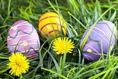 Kolorowi Wielkanocni jajka w trawie zdjęcie royalty free
