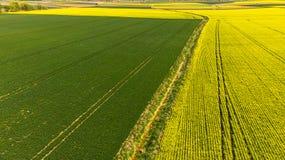 Kolorowi wzory w upraw polach przy ziemi? uprawn?, widok z lotu ptaka, trute? fotografia obrazy royalty free