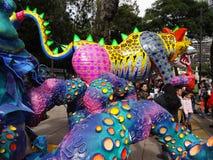 Kolorowi zwierzęta w Meksyk Obrazy Stock