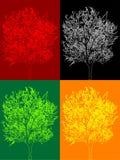 kolorowy Fotografia Royalty Free