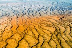 Kolorowy, abstrakcjonistyczny, naturalny wzór w Yellowstone parku narodowym, Wyoming, usa Zdjęcia Royalty Free