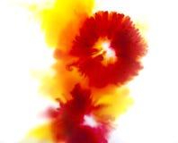 Kolorowy abstrakcjonistyczny tło pojęcie, czerwień i kolor żółty kwiatu, Fotografia Stock