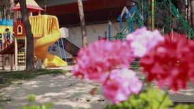 Kolorowy boisko i piękni kwiaty zdjęcie wideo