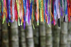 Kolorowy Brazylijski Karnawałowy życzenie faborków bambusa las Zdjęcie Stock