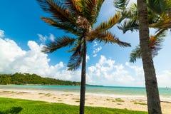 Kolorowy brzeg w Pointe De Los angeles Zasolony pla?y w Guadeloupe fotografia royalty free