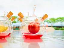 Kolorowy chemiczny fluid w naukowym zdjęcie royalty free