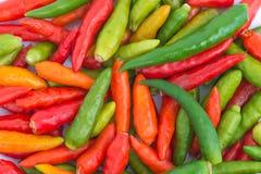 Kolorowy chili pieprzu pełny ekran Zdjęcie Royalty Free