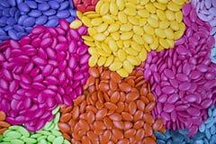 Kolorowy czekolady guzików, błękita, koloru żółtego i menchii use dla projektanta, Obrazy Royalty Free