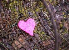 Kolorowy dekoracyjny serce na starym wieśniaka żelaza arfy tle cherry konceptualny serce zrobił zdjęcie pomidorów Obrazy Royalty Free