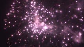 Kolorowy fajerwerku pokaz dla świętowania zbiory wideo