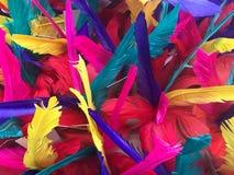 Kolorowy farbujący piórko, tło i tekstura, obrazy stock