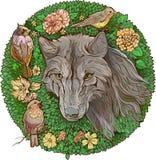 Kolorowy florystyczny wizerunek wilk i ptaki Zdjęcie Stock
