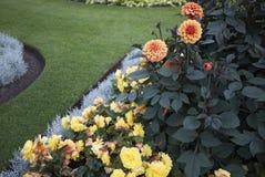 Kolorowy flowerbed przy Kew Fotografia Stock