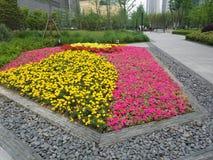 Kolorowy flowerbed w miasto parku Fotografia Stock