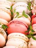 Kolorowy francuski macarons tło, zamyka up Różny kolorowy macaroons tło Smakowity słodki koloru macaron, piekarnia Zdjęcie Royalty Free