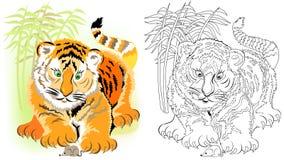 Kolorowy i czarny i biały wzór dla barwić Ilustracja śliczny tygrys ilustracja wektor