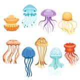 Kolorowy jellyfish set, pływackie morskie istoty akwareli wektoru ilustracje ilustracja wektor