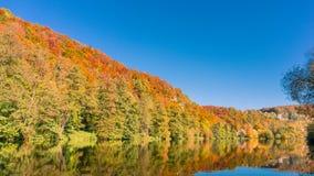 Kolorowy jesień las przy Bawarskim rzecznym Naab blisko Regensburg obraz stock