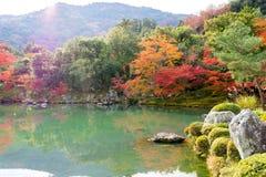 Kolorowy jesień liście z odbiciem w stawie przy Tenryo-ji T Obrazy Royalty Free