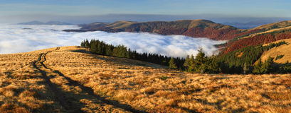 kolorowy jesień krajobraz Obrazy Stock
