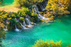 Kolorowy jesień ranek w Plitvice jezior parku narodowym Obraz Stock