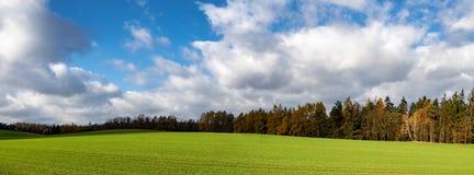 Kolorowy jesienny krajobraz z zieloną łąką, drzewami i niebem, obraz stock