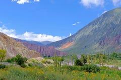 Kolorowy krajobraz przy Cuesta De Lipan jarem od Susques Purmamarca, Jujuy, Argentyna Zdjęcie Stock