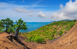 kolorowy krajobrazowy lato Zdjęcie Royalty Free