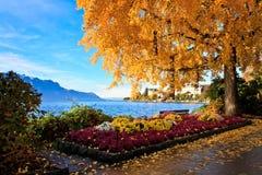 kolorowy krajobrazowy szwajcar obrazy stock