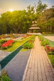 Kolorowy krajobrazowy widok kwiatu ogród i północny Thai sty Zdjęcie Stock