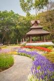 Kolorowy krajobrazowy widok kwiatu ogród i północny Thai sty Obrazy Stock