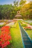Kolorowy krajobrazowy widok kwiatu ogród i północny Thai sty Obraz Royalty Free