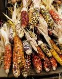 kolorowy kukurydzany wakacje Obrazy Stock