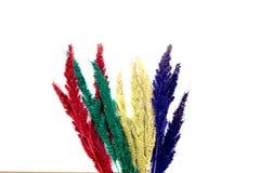 Kolorowy kwiat na drewnianych tło zdjęcia stock