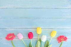 Kolorowy kwiatu bukiet na błękitnym drewnianym tle zdjęcie stock