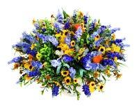 Kolorowy kwiatu bukiet odizolowywający na białym tle Zdjęcia Royalty Free