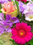 Kolorowy kwiatu bukiet. Obrazy Royalty Free